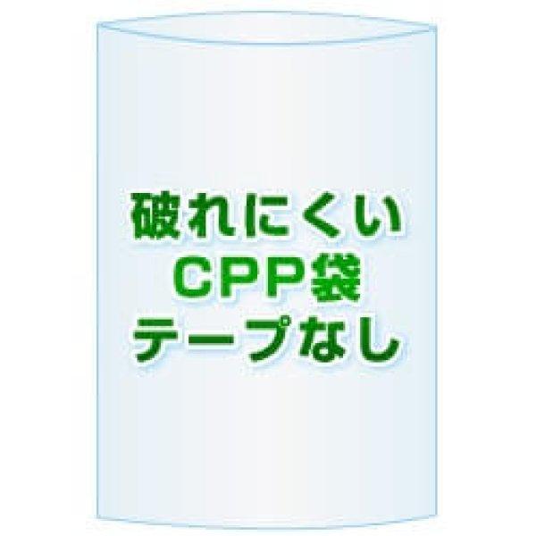 画像1: CPP(シーピーピー)袋(フタなし)【#30 70x110 10,000枚】 (1)