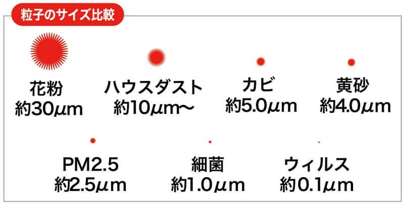 粒子のサイズ比較表