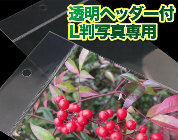 透明ヘッダー付L判写真専用